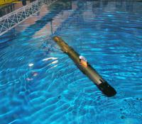 The Gavia AUV in the center's test tank.