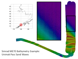 Bathymetry example of sandwaves.