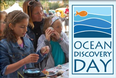 A mom and two young daughters examine seashells.